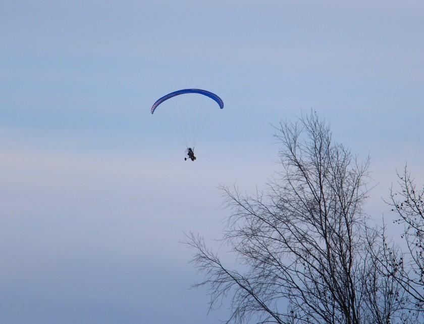 paraflyer