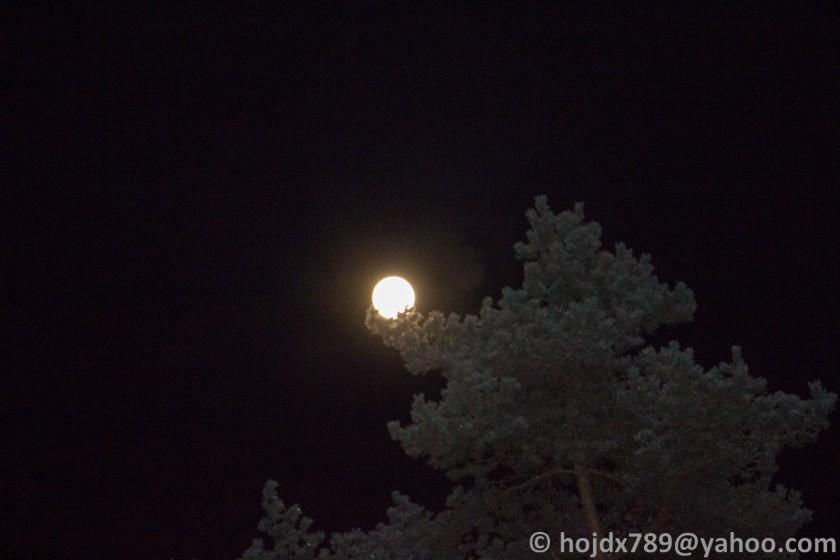 måne och tall
