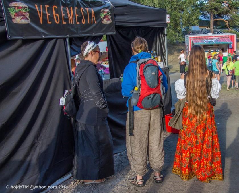 kaustinen folk music festival 2014_3
