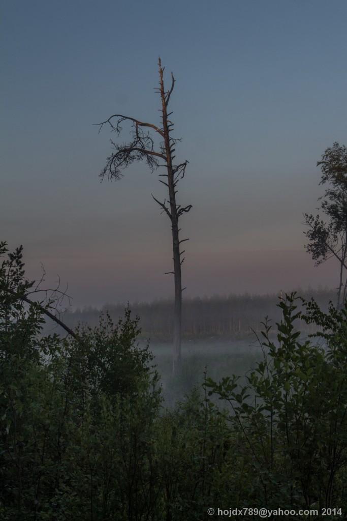 oxkangar natur 2014_6