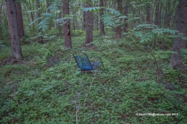 stol i skogen