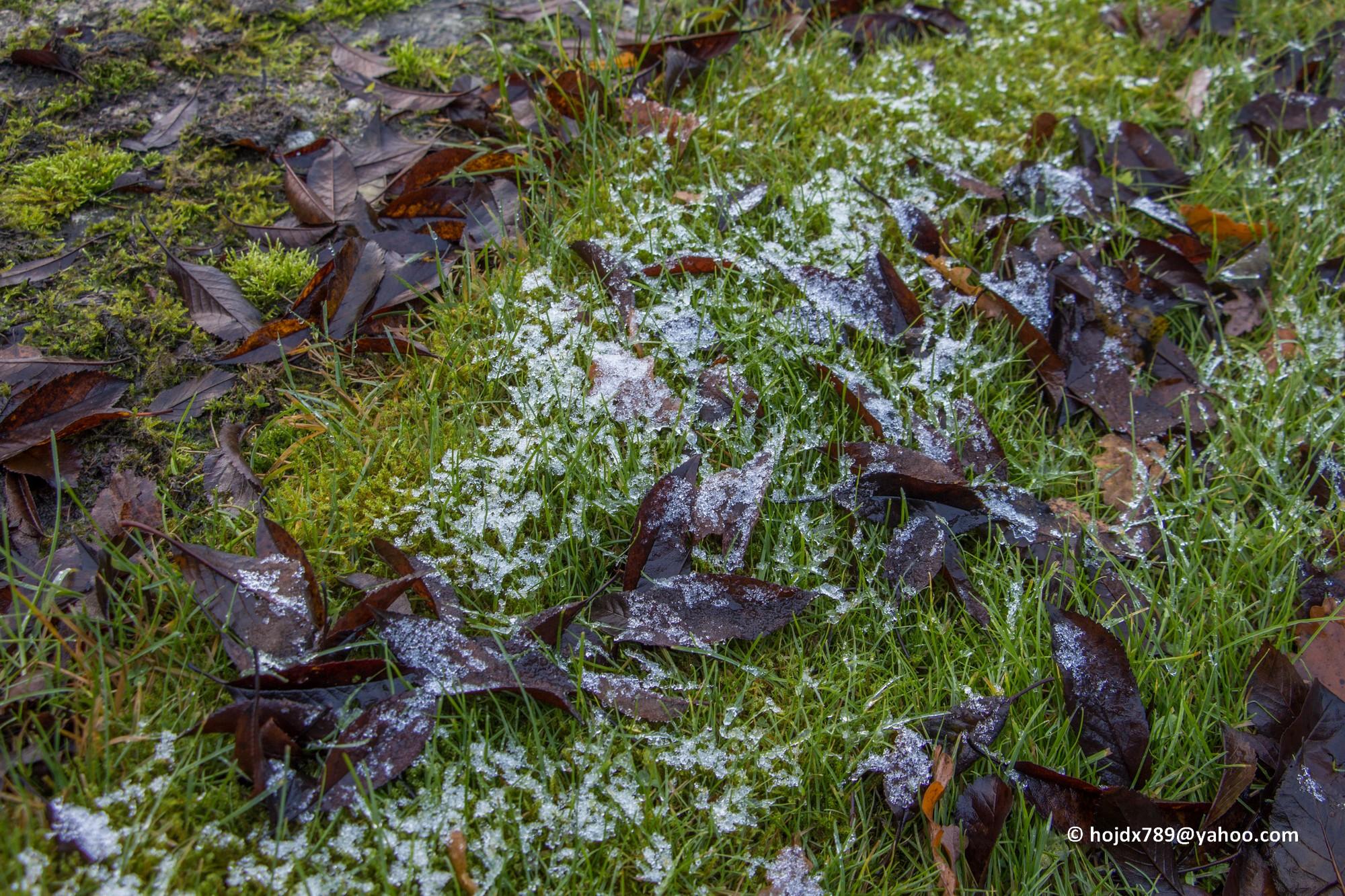 2015-11-16 Första lilla snön 001mod