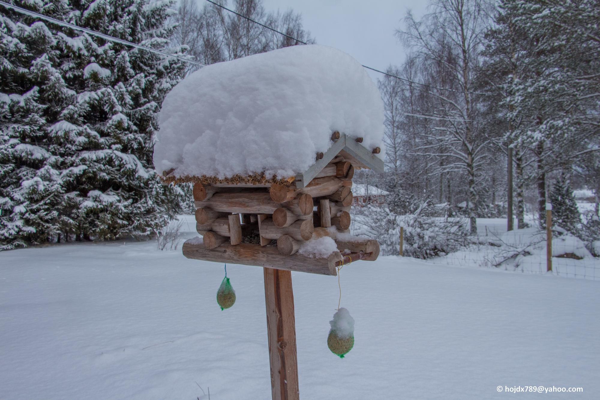 2016-01-16 Vinter 003-1