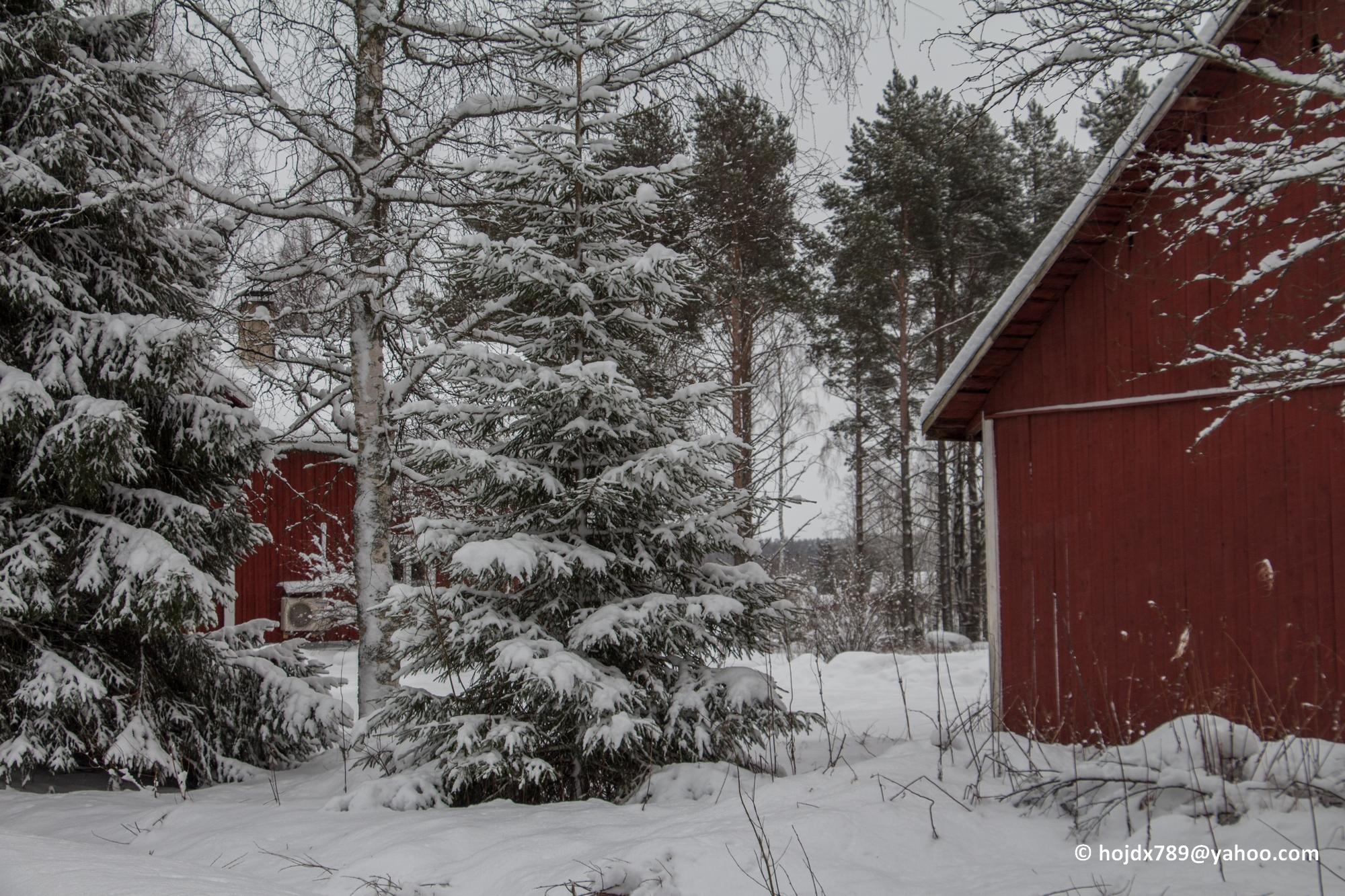 2016-01-16 Vinter 053-1