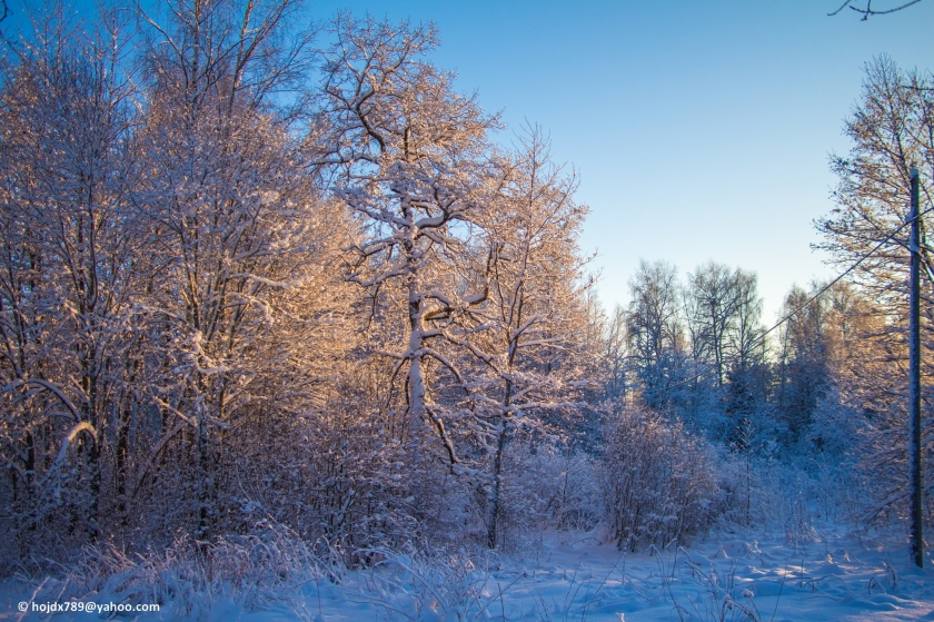 2016-01-21 Vinterbilder 010-1