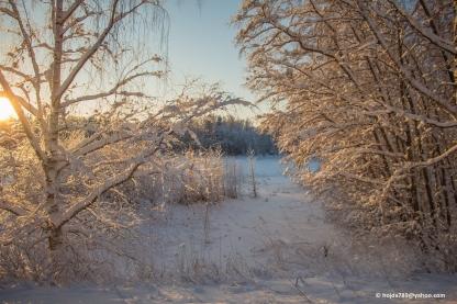 2016-01-21 Vinterbilder 018-1