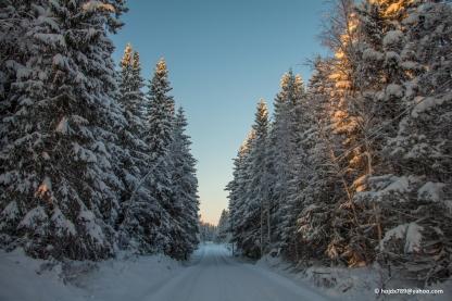 2016-01-21 Vinterbilder 049-1