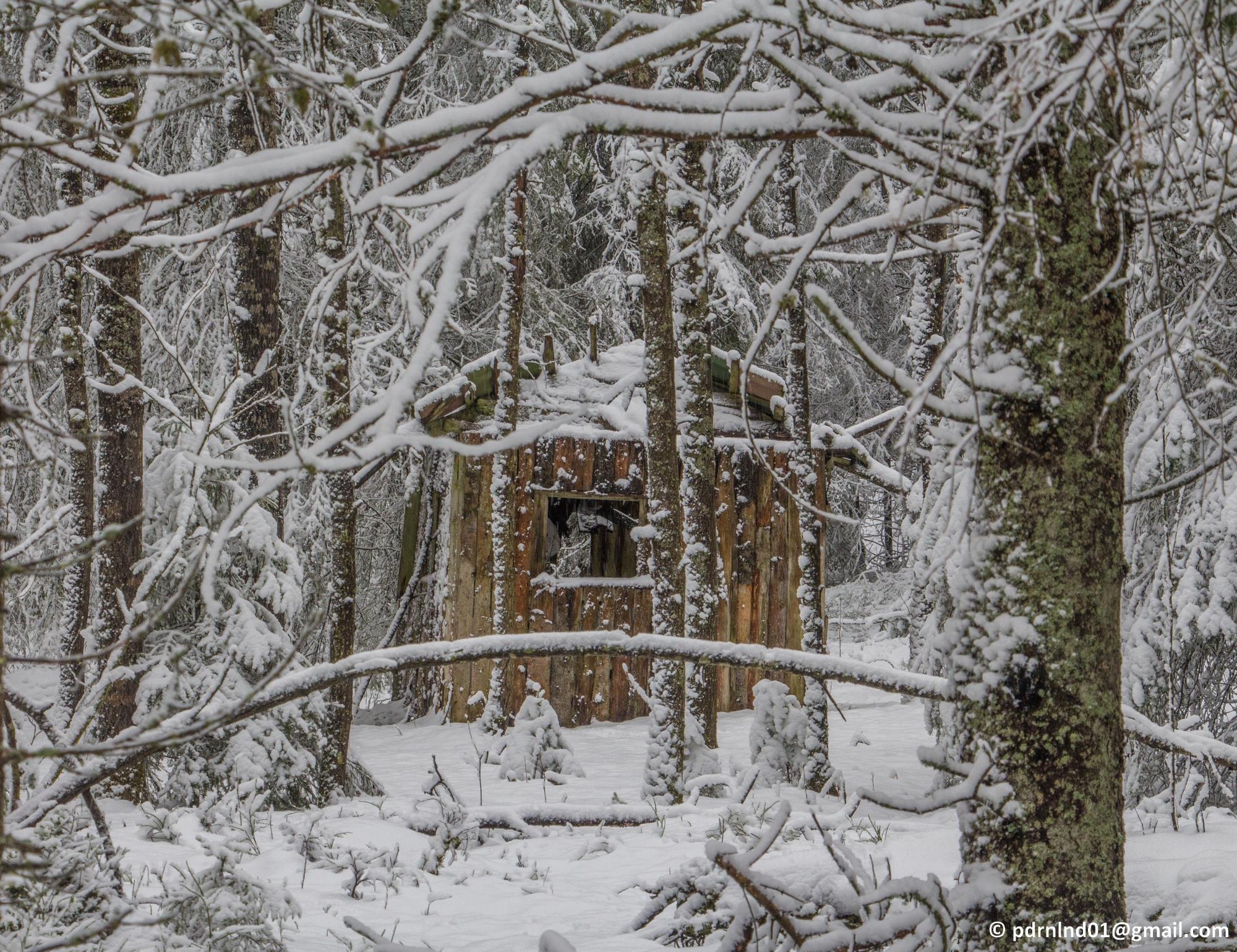 2016-02-12 Vinter och snö 023-1
