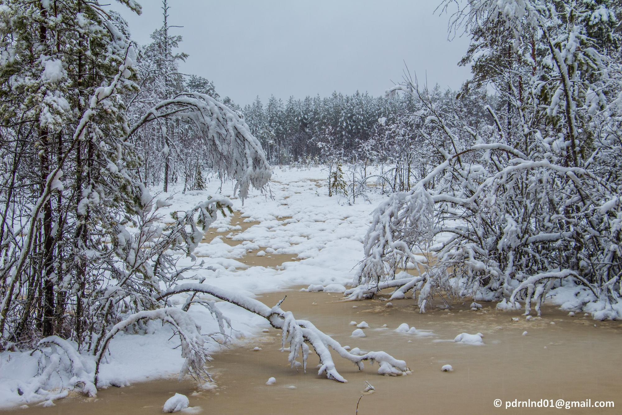 2016-02-12 Vinter och snö 040