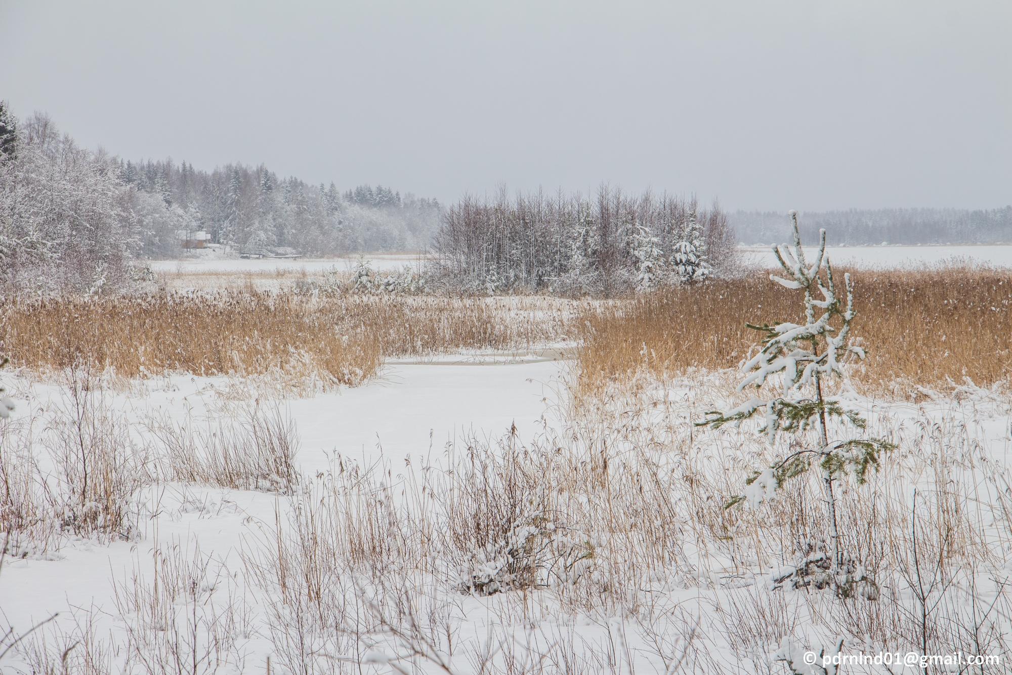 2016-02-12 Vinter och snö 055-1