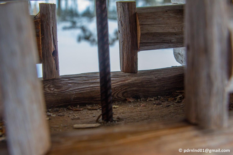 tomt fågelbord