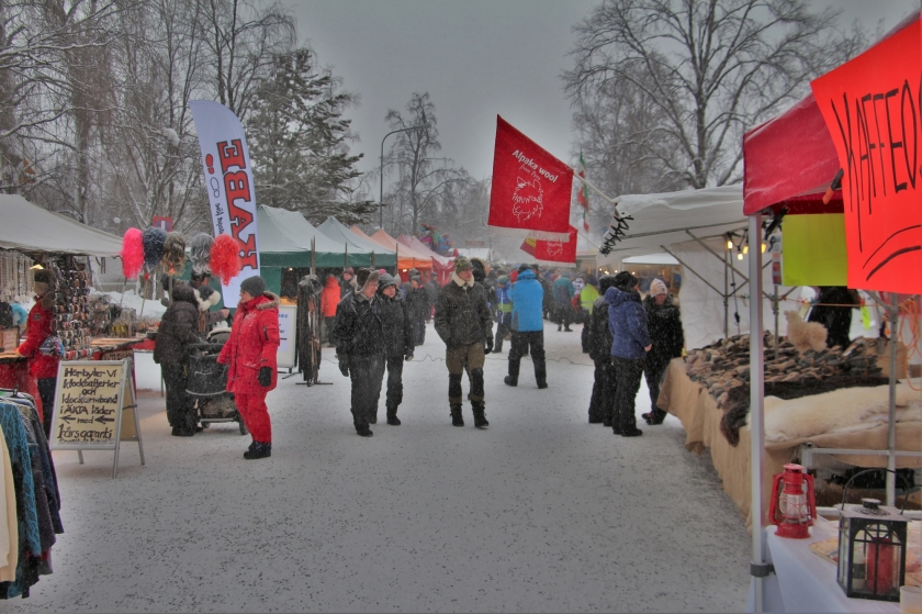 2016-02-06 Jokkmokk 011 (2) Foto