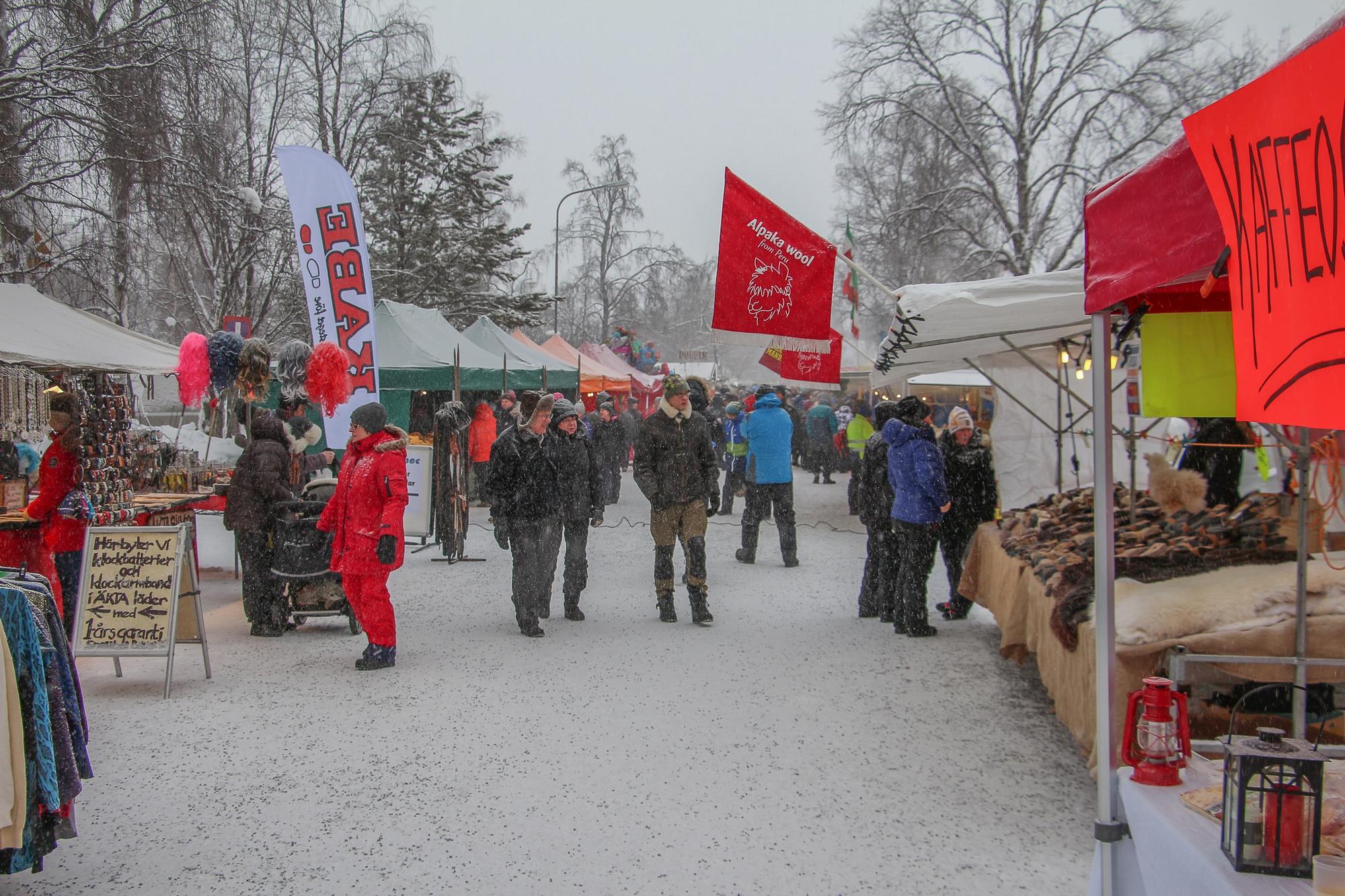 2016-02-06 Jokkmokk 011 LR