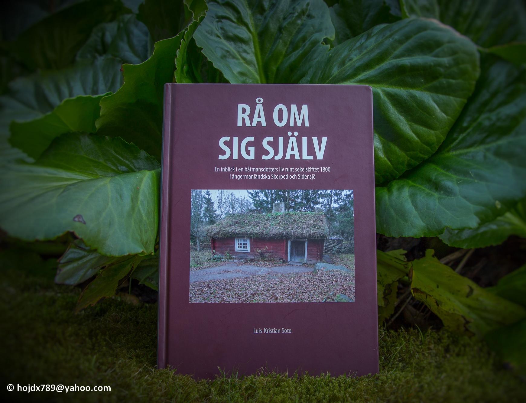 2016-07-20 Rå om sig själv