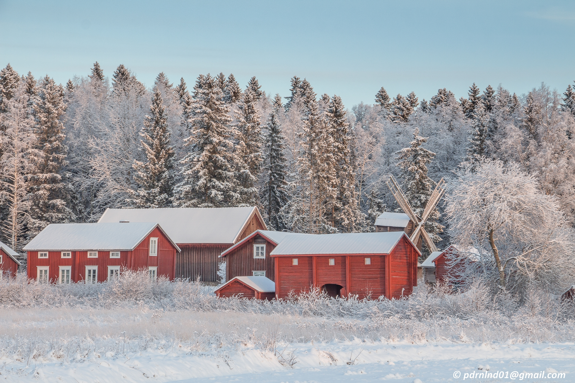 Skogen, det stående folket, som Katarina Östholm skriver i sin artikel, vakar över gård och bygd.